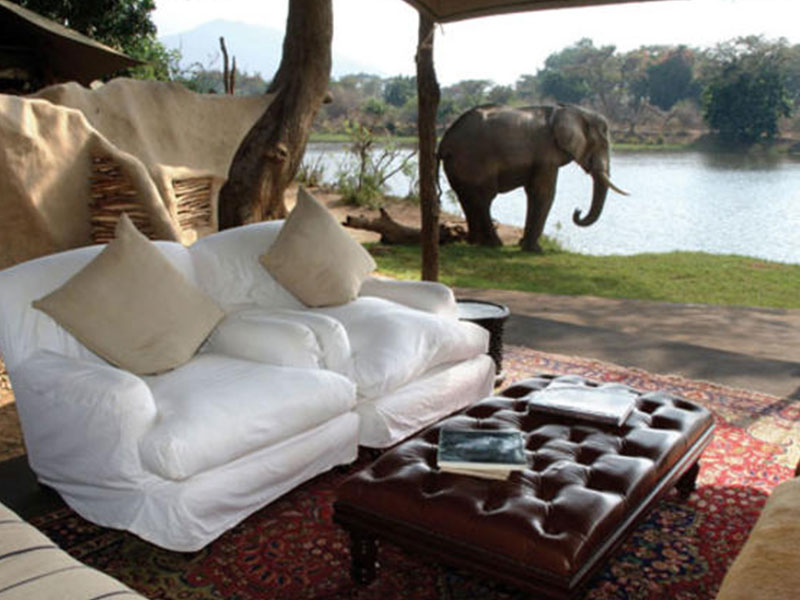 Rustic & Authentic Safari Experience