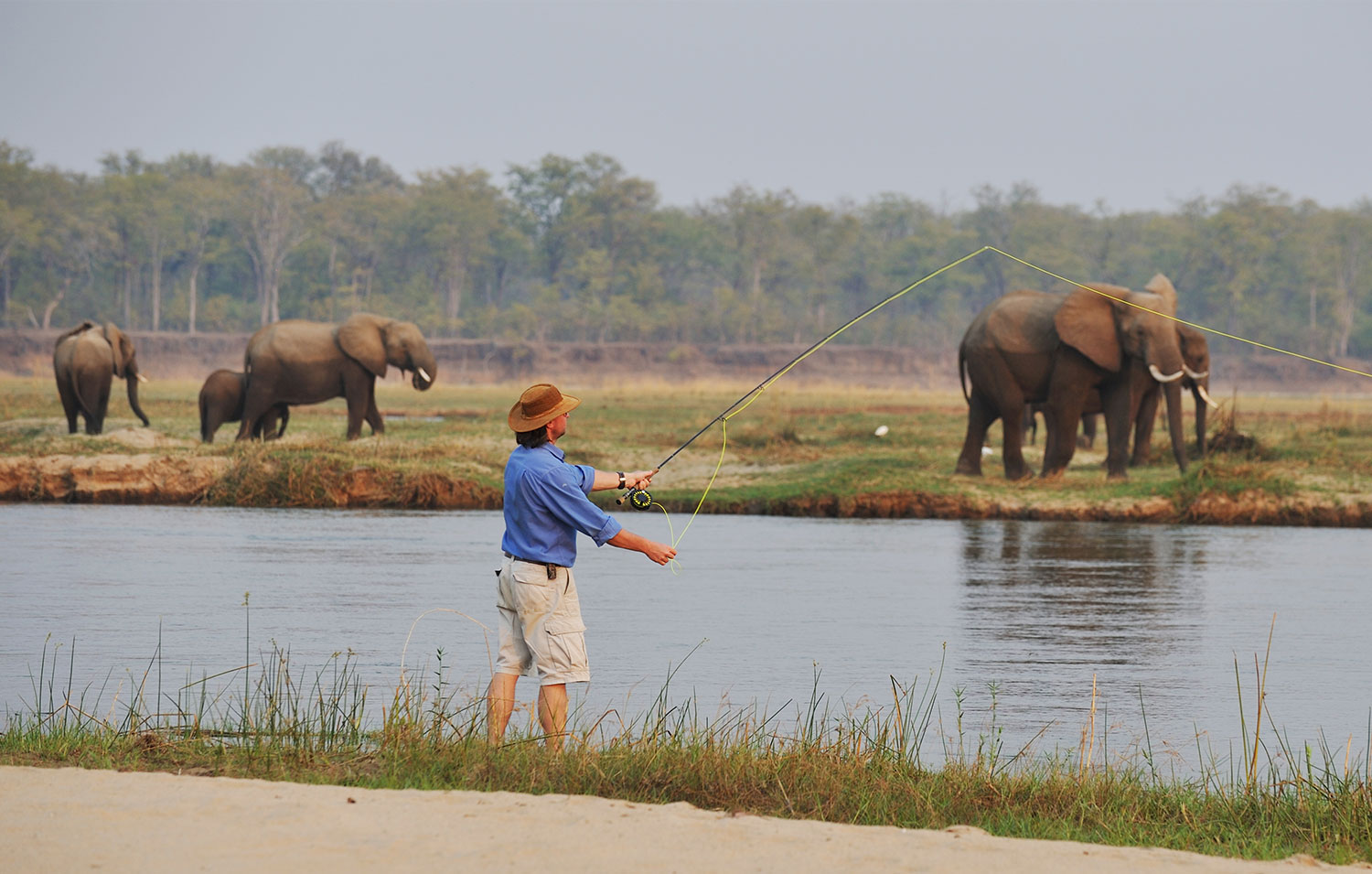 Superb river safari activities