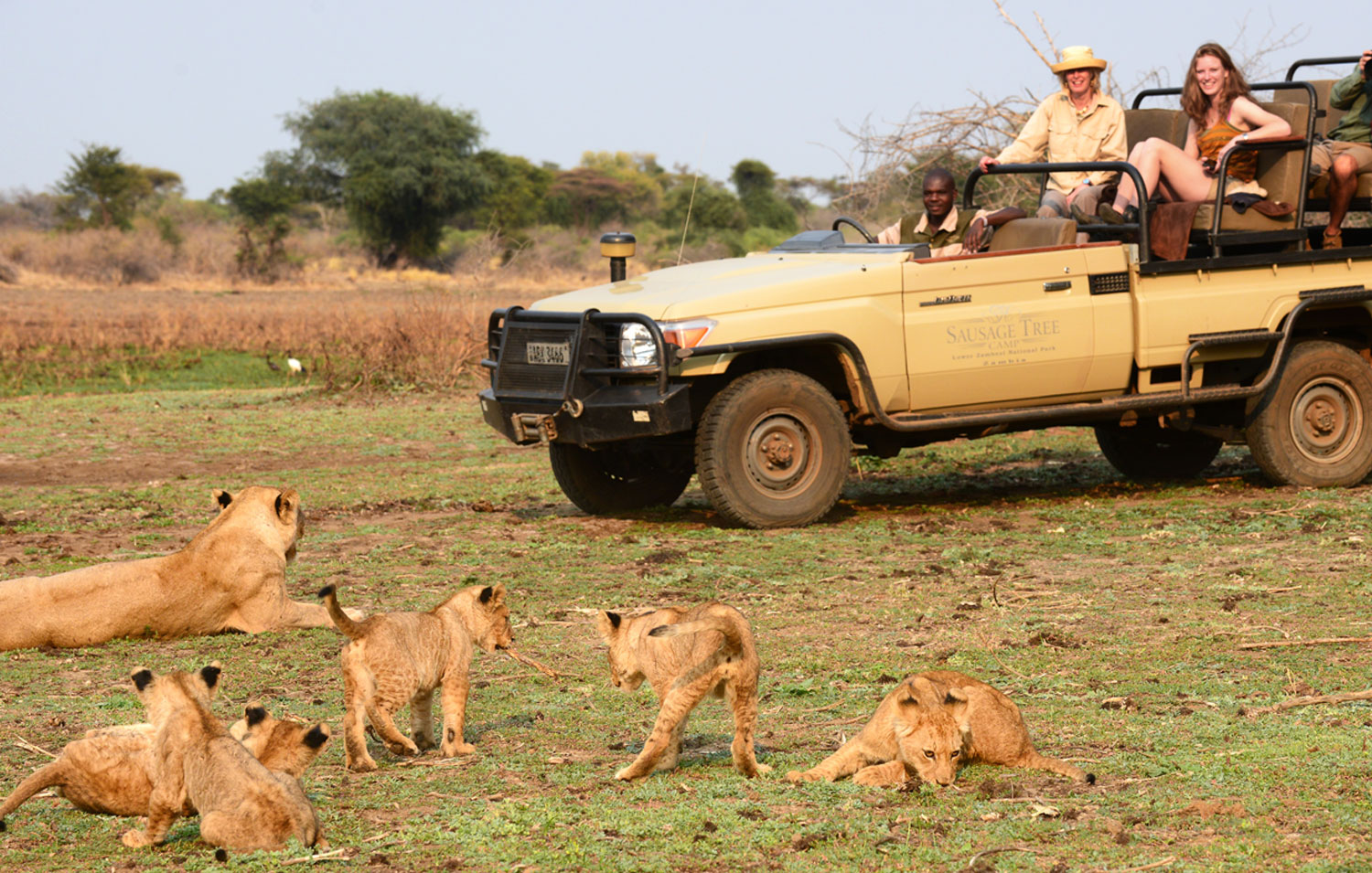 Private guiding safari experience